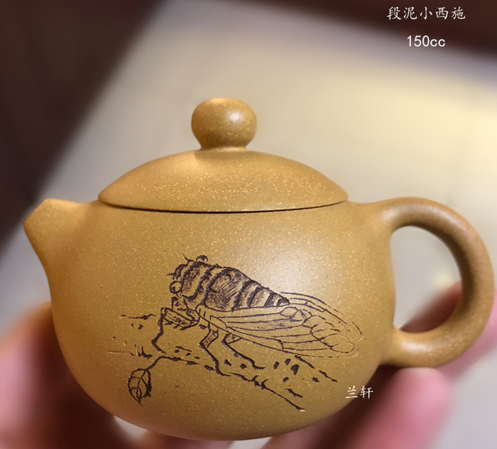 Little Xishi - Chinese Purple Clay Teapot